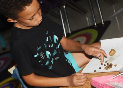 CES second-grader Jaxon Williams removes the chips from his chocolate chip cookie dough.