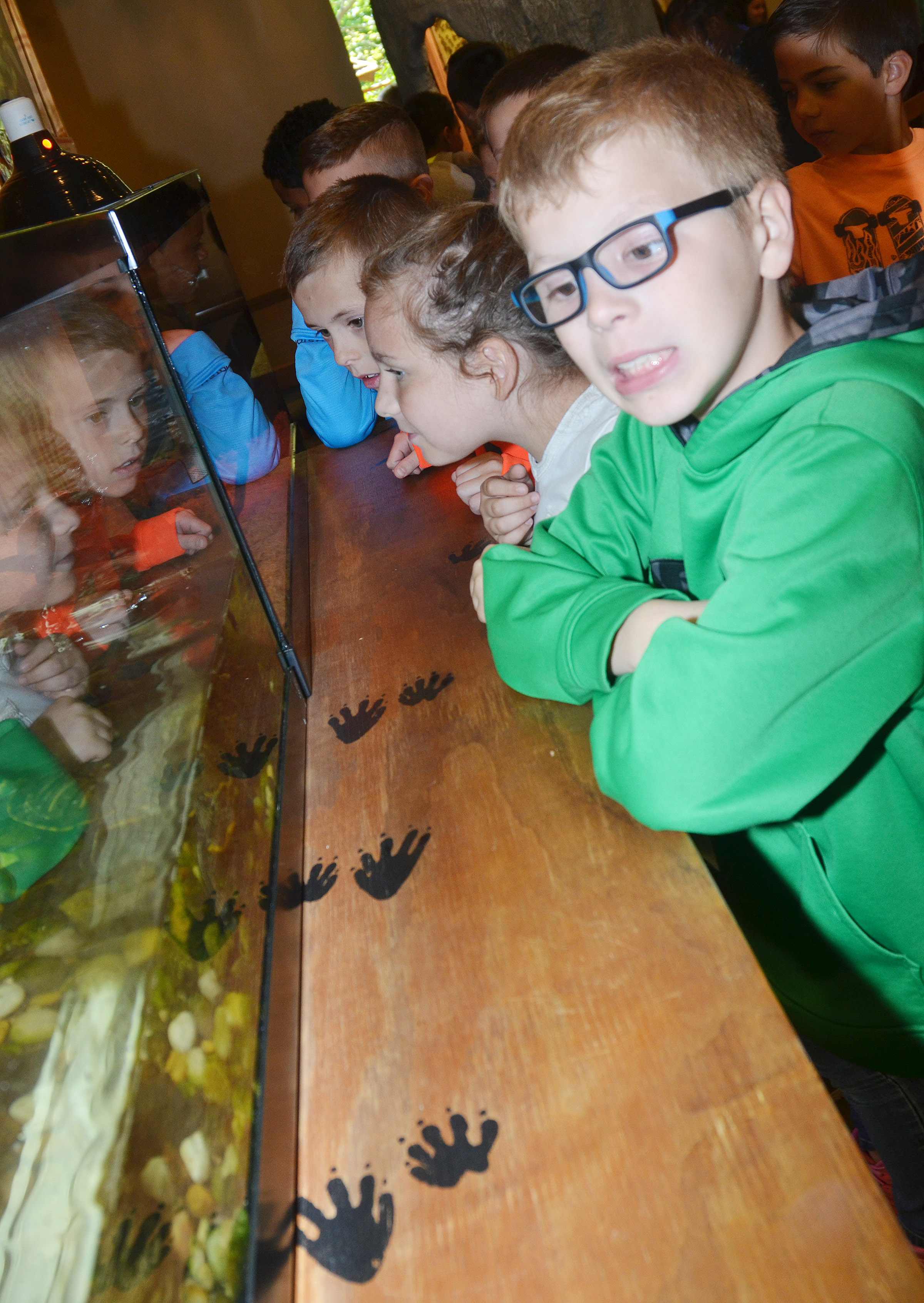 CES third-grader Ethan Irwin and his classmates look at the turtles and snakes on display at the Green River Lake Visitor Center.