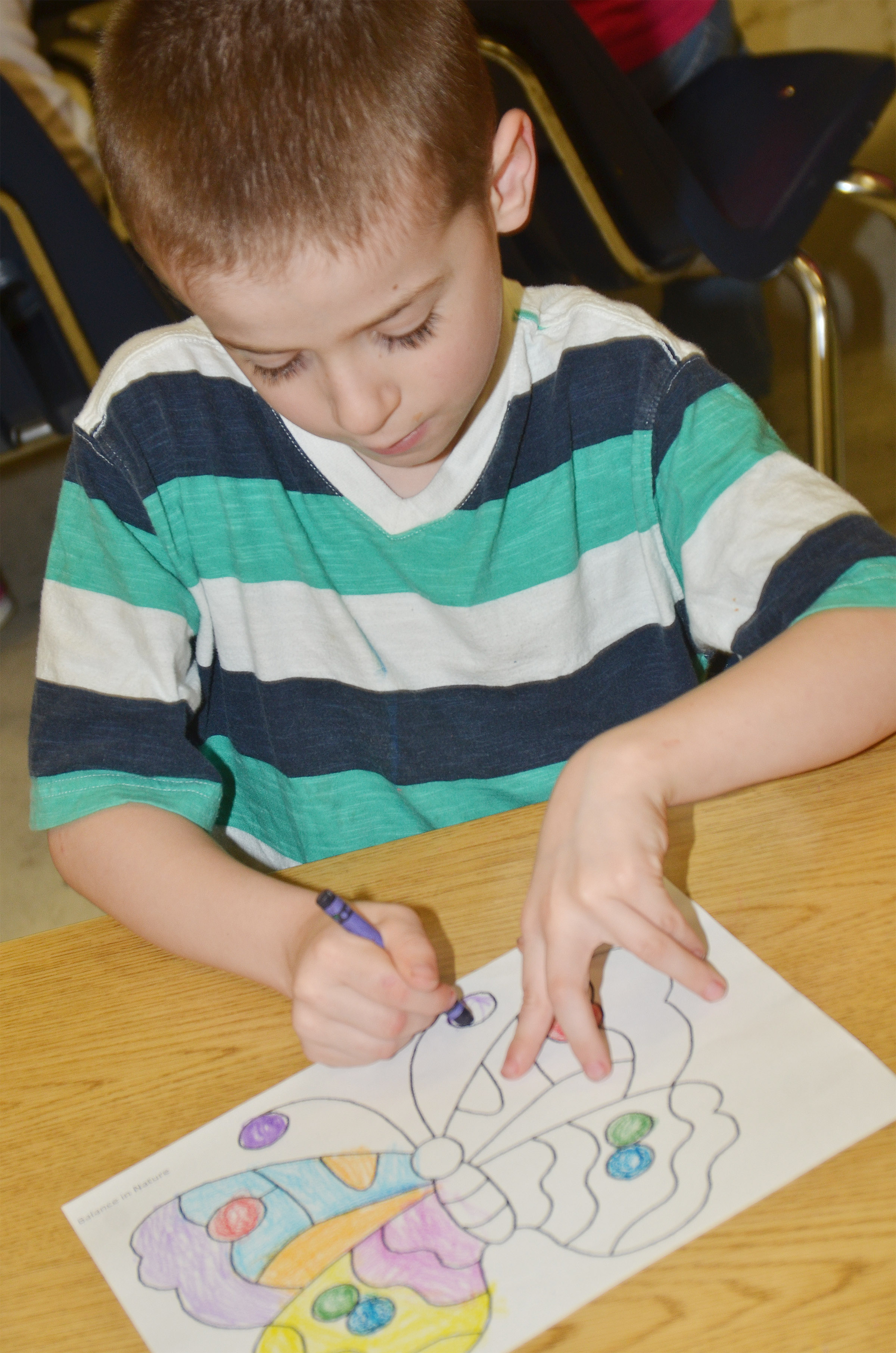 CES kindergartener Greyson Trulock colors his butterfly.