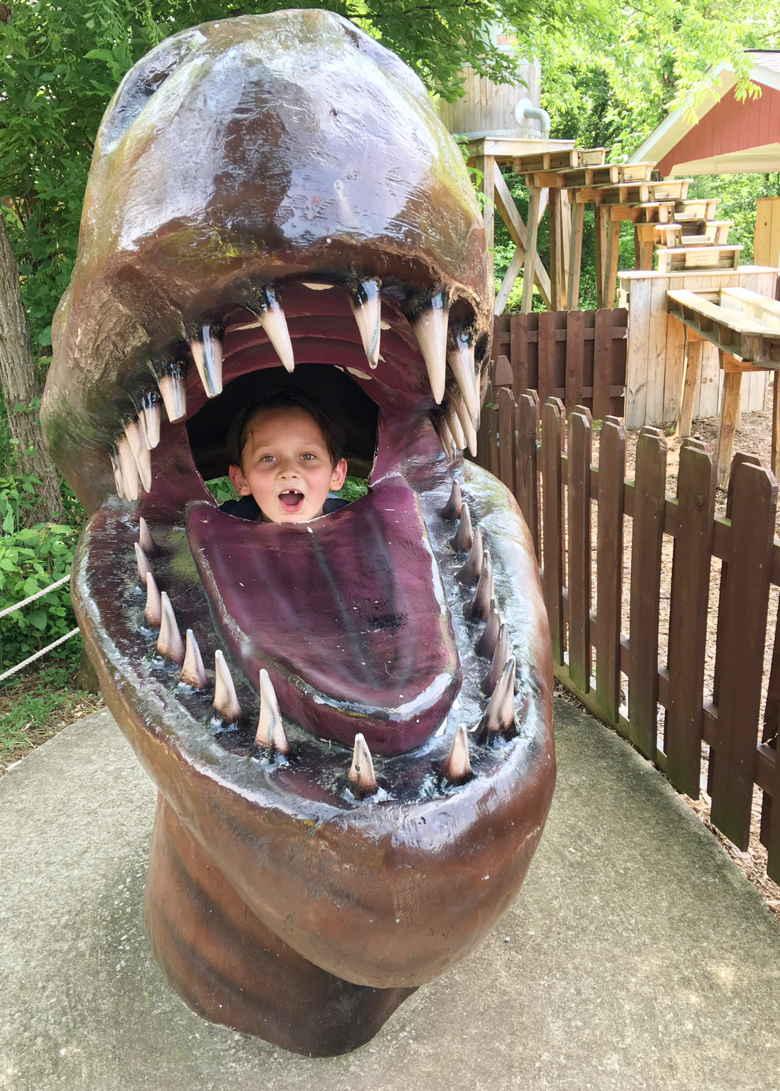 CES kindergartener Karter Young puts his head inside a dinosaur's mouth.