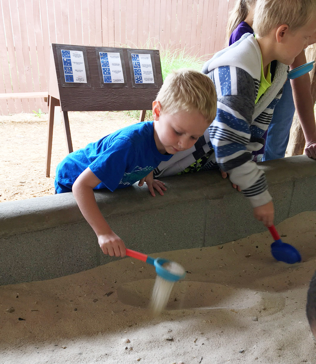CES kindergartener Jackson Wright digs for fossils.
