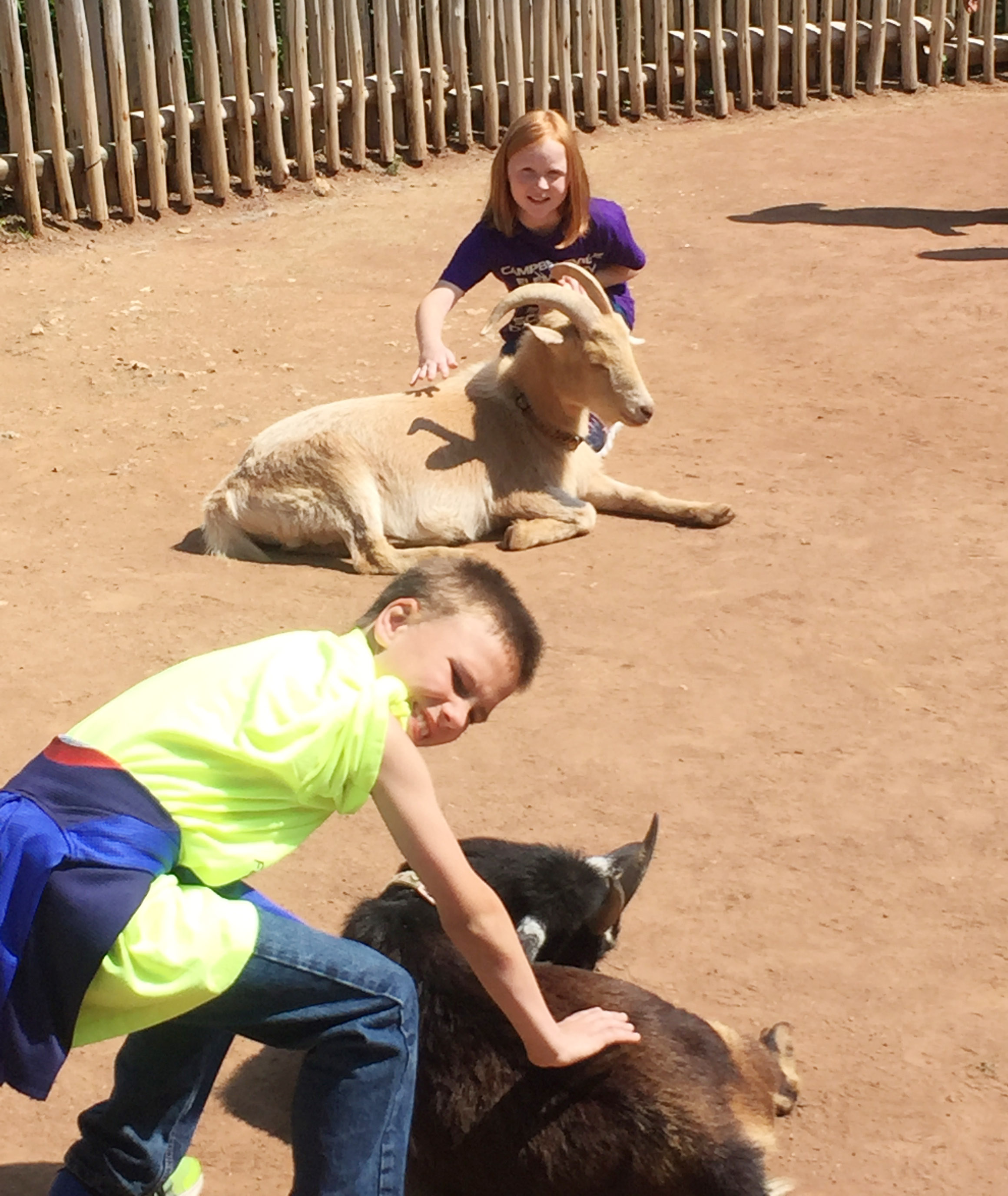 CES third-graders Jayden Harris, in front, and Nora Harris pet goats at the petting zoo.