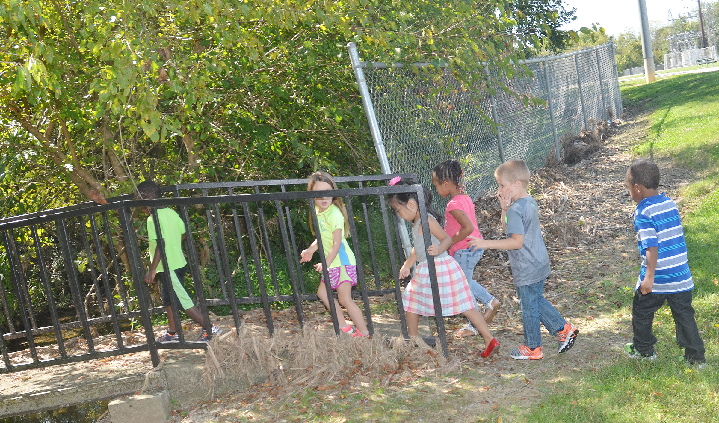 CES preschool students cross a bridge on their nature walk.