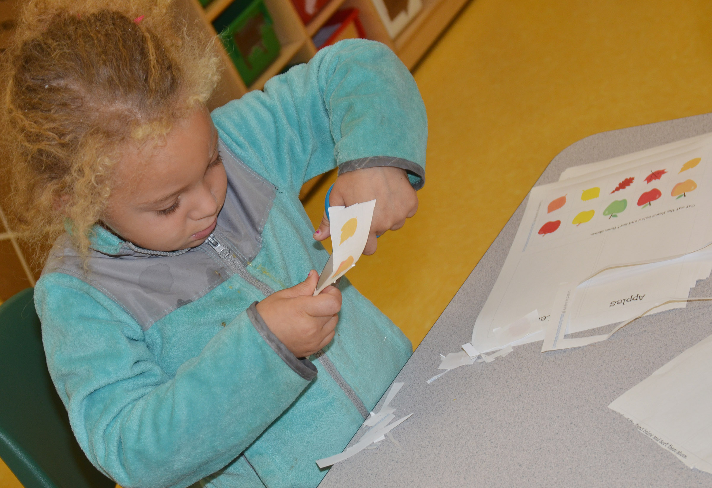 CES preschool student Jayla Barbee cuts out leaves to sort by color.