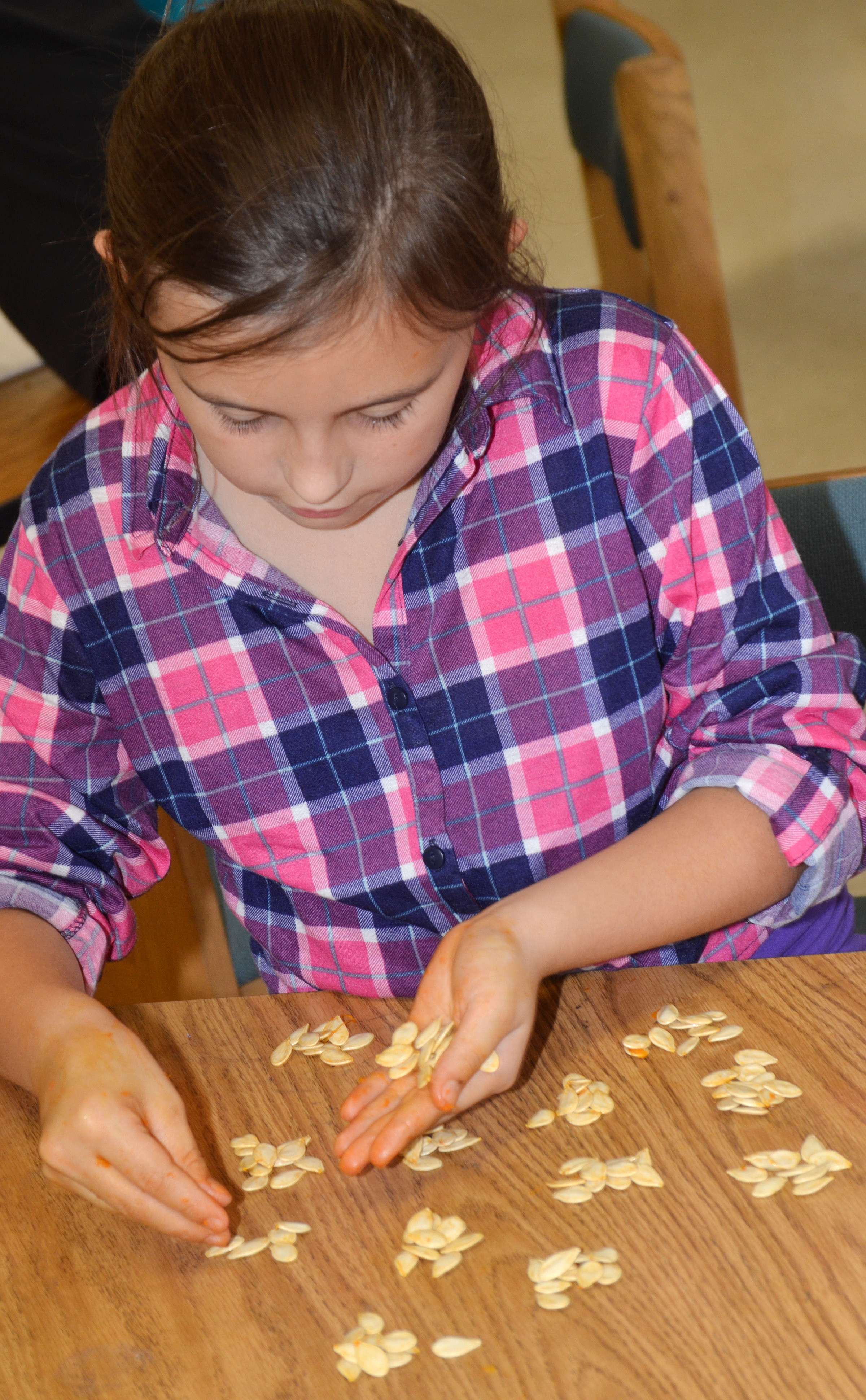 CES third-grader Annabelle Brockman counts pumpkin seeds.