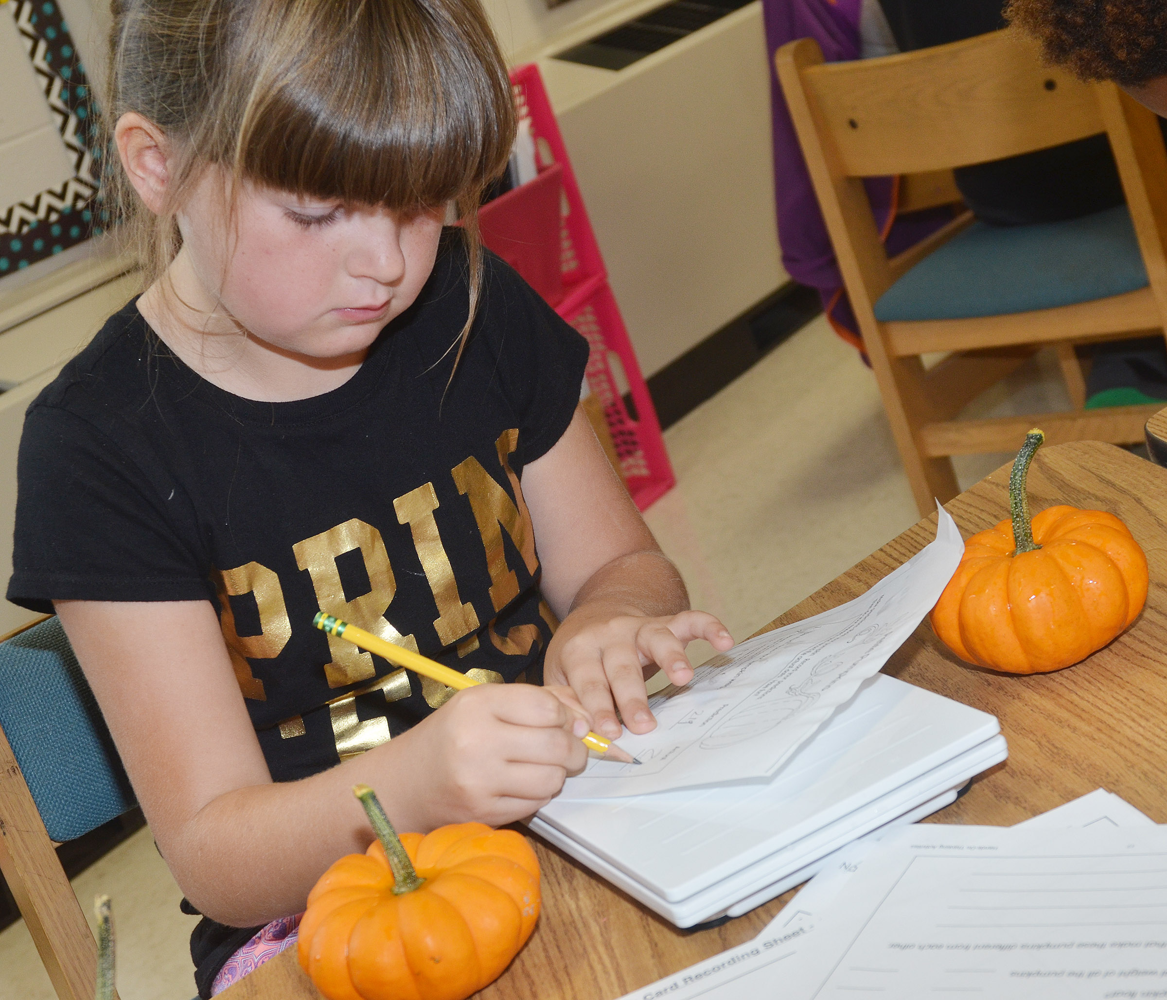 CES third-grader Kaleigh Wilhoite records data about her pumpkins.