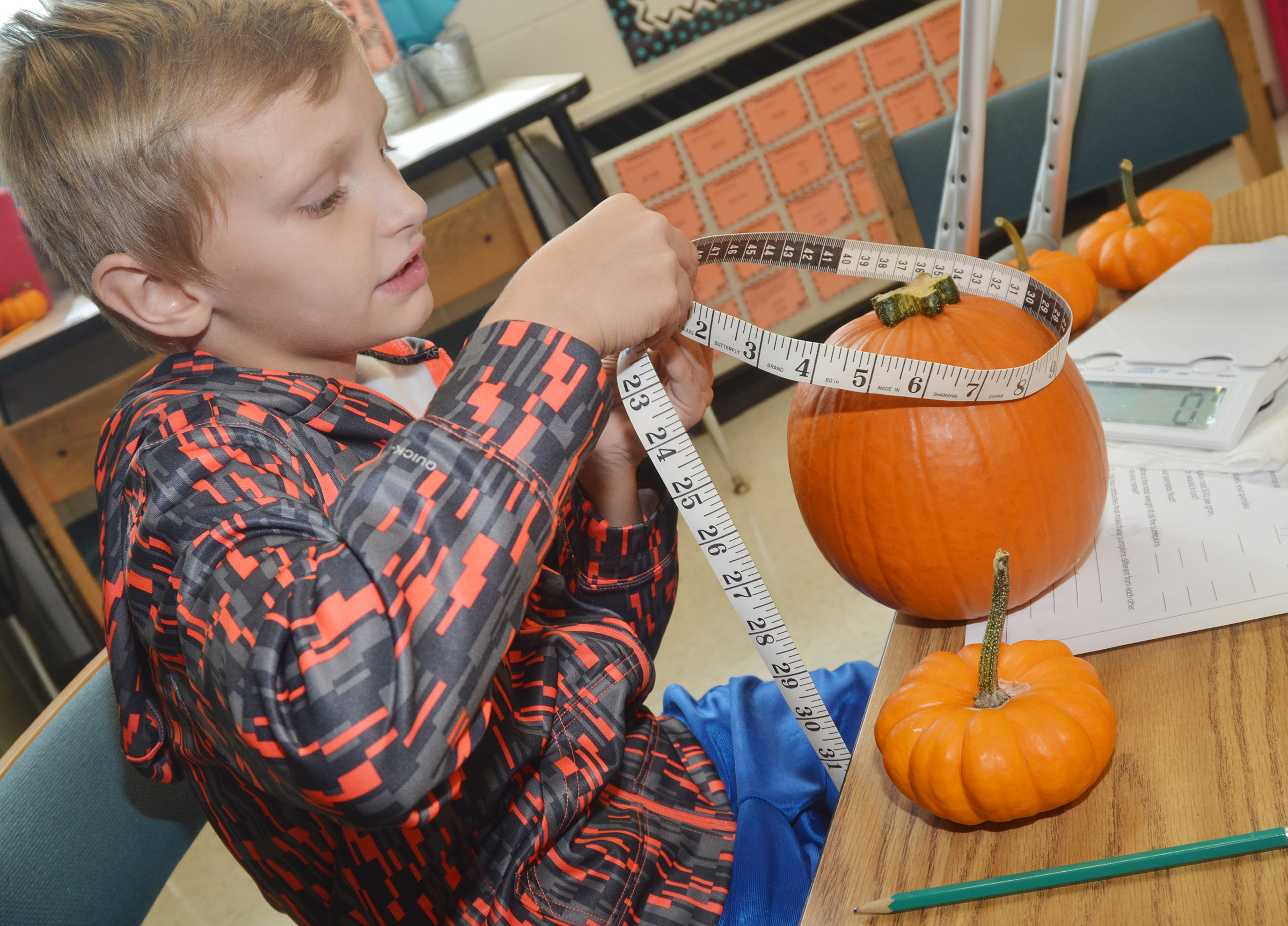 CES third-grader Aaron Ritchie measures the circumference of his pumpkin.