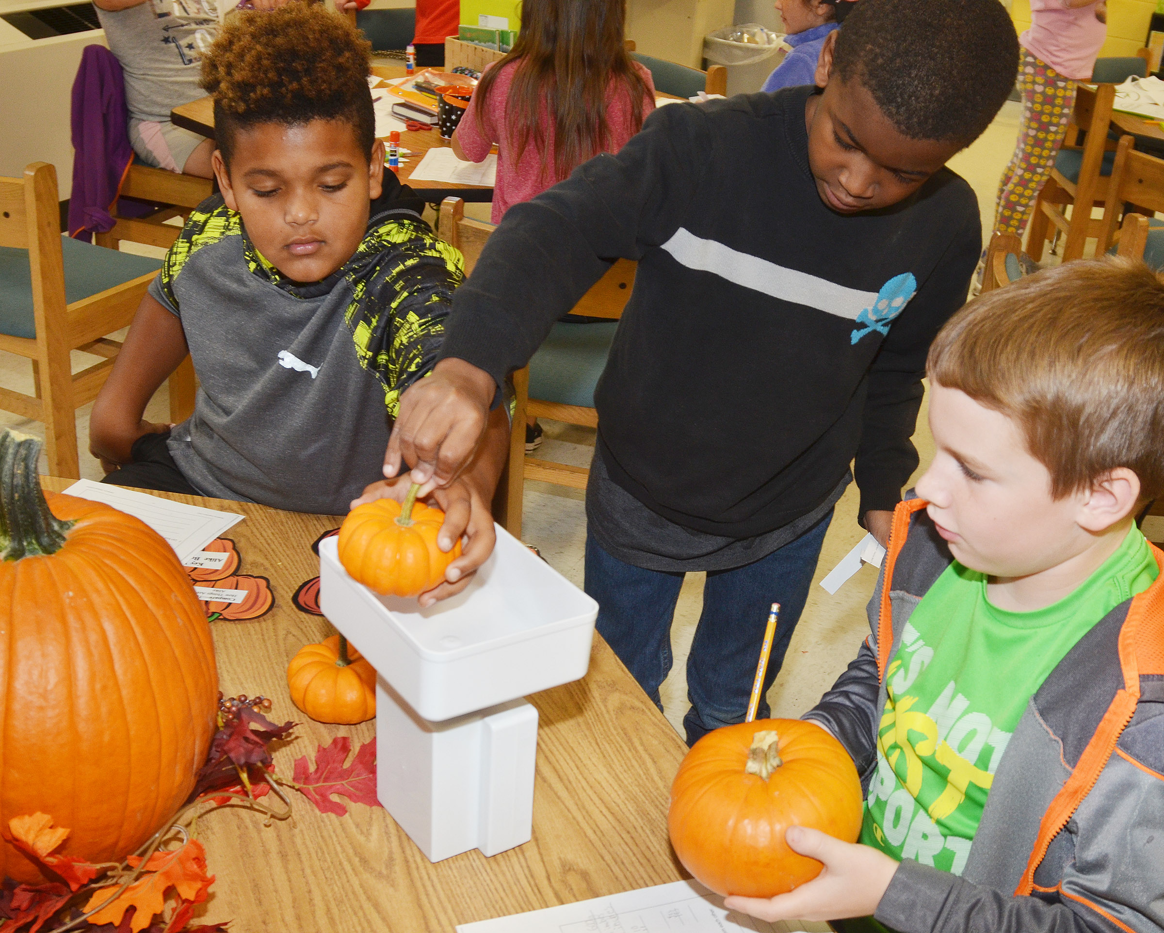 From left, CES third-graders Jayden Moore, Kae'vin Spaulding and Stephen Green see how much their pumpkins weigh.