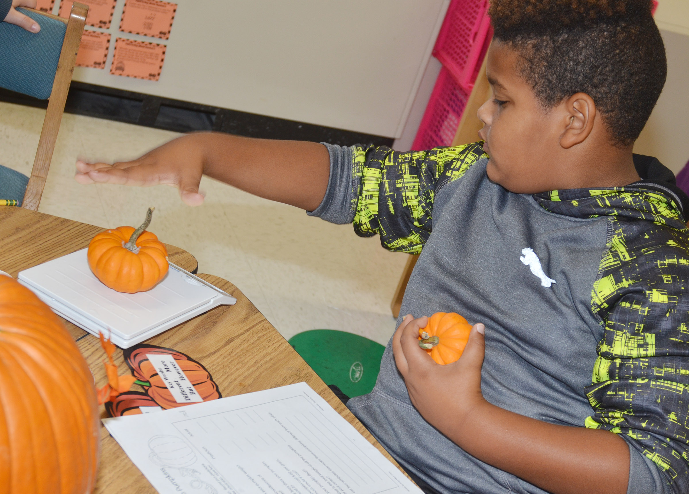 CES third-grader Jayden Moore weighs his pumpkin.