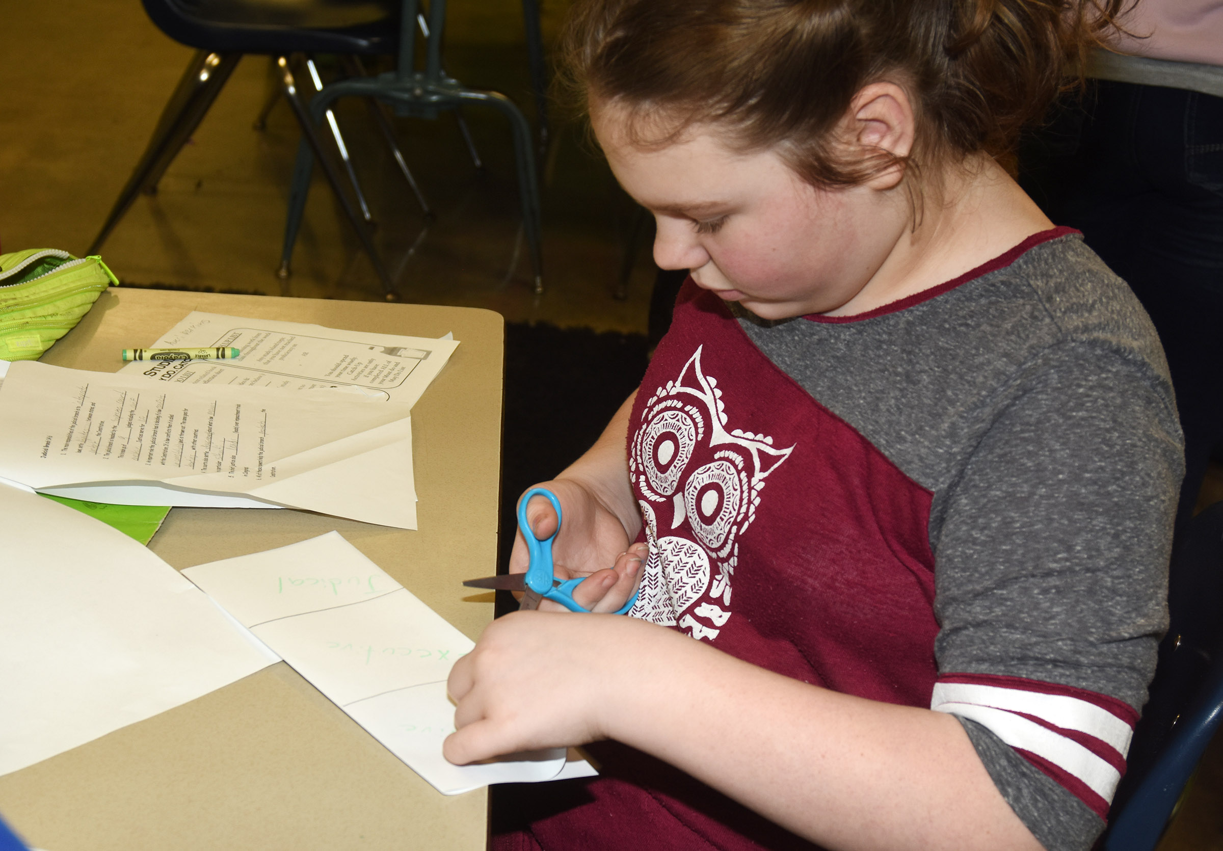 CES fifth-grader Averi Perkins makes a branches of government flashcard.