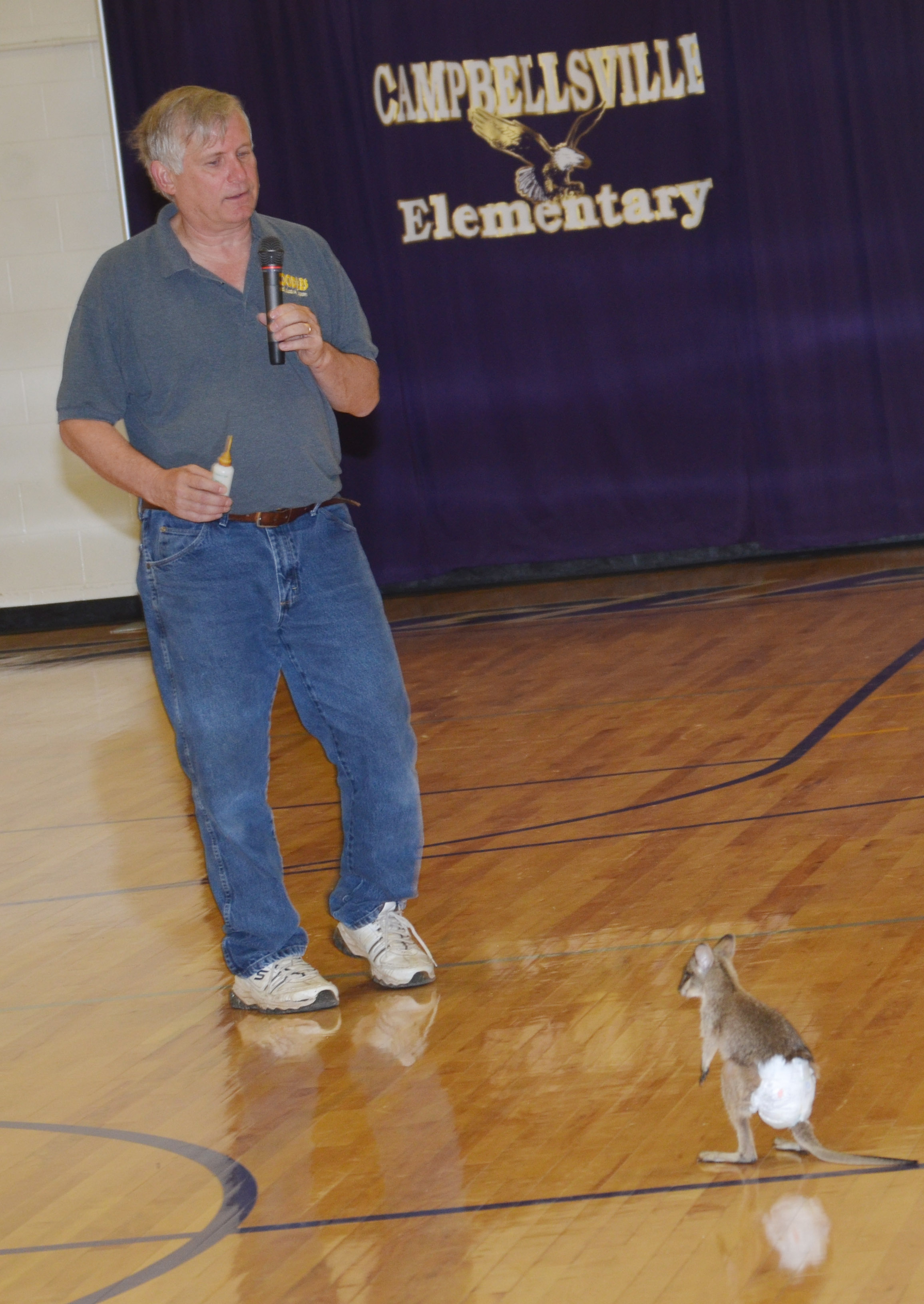 Steven Thomas of Zoodles animal education program shows CES students a baby kangaroo named Wendy.