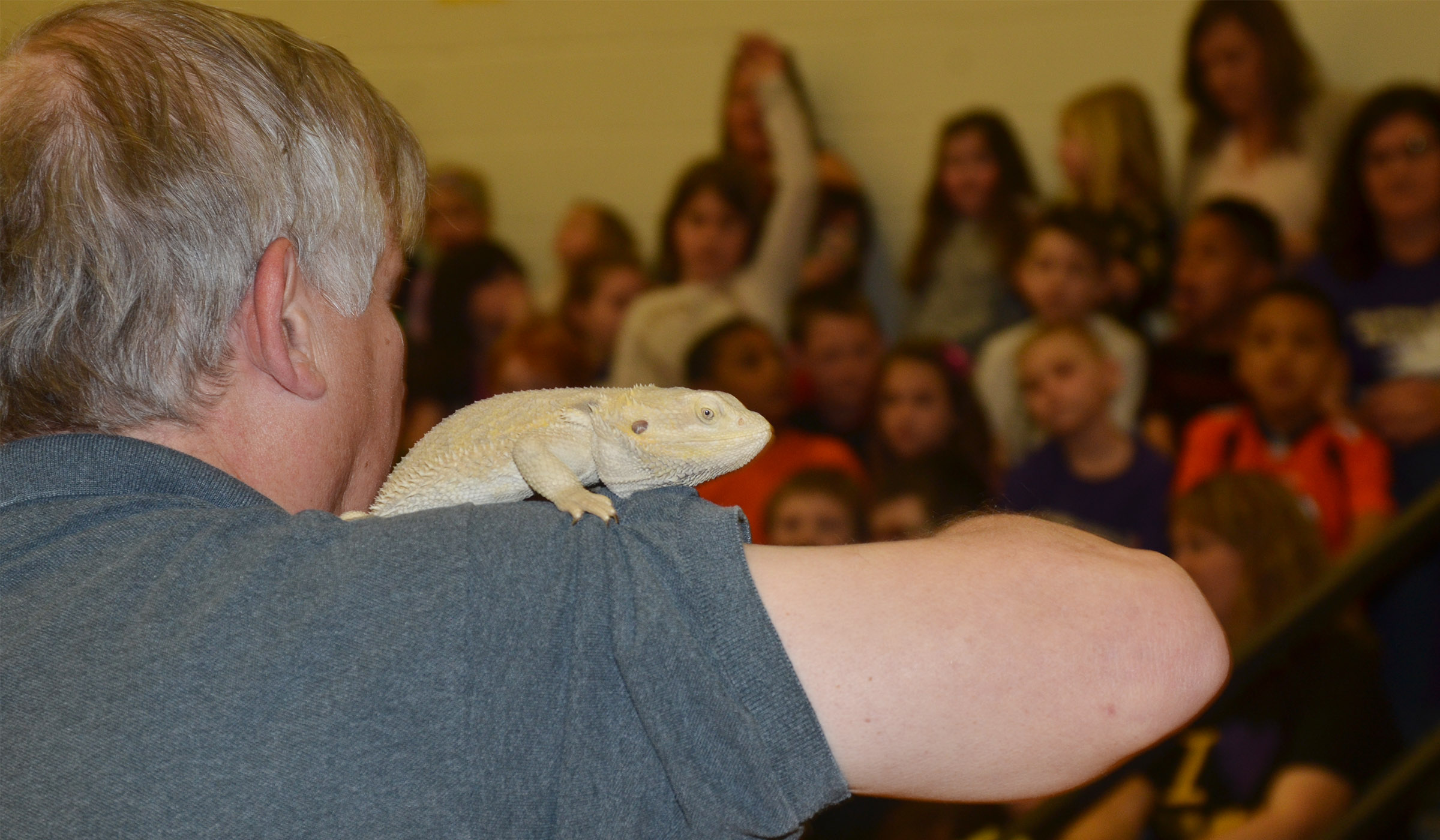 Steven Thomas of Zoodles animal education program shows CES students a bearded dragon.