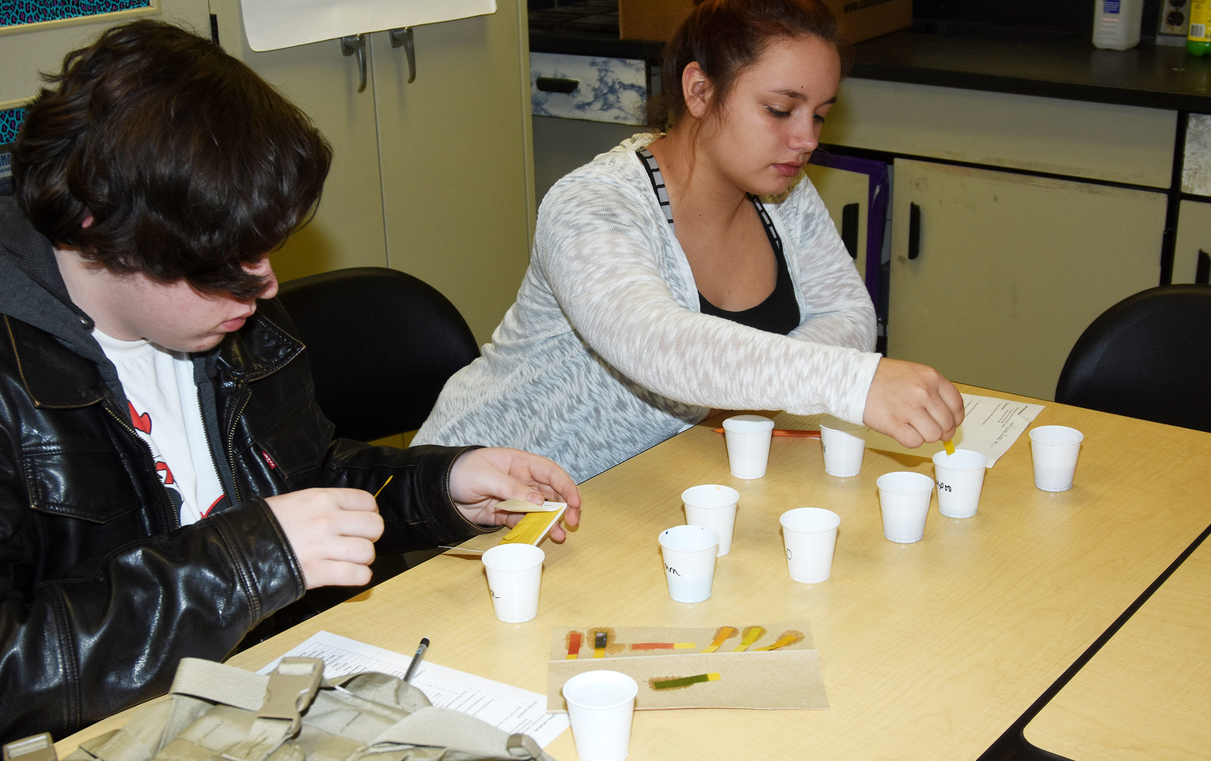 CHS sophomores Lathan Vincent, at left, and Autumn Babbs perform litmus tests.