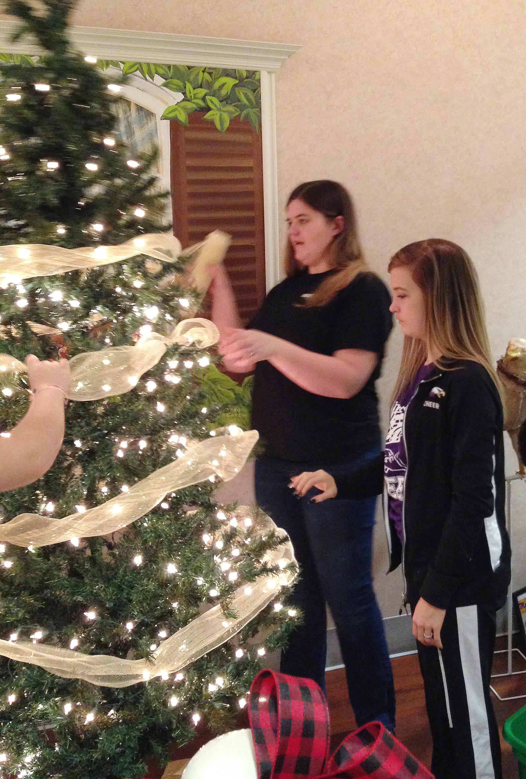 CHS senior Vivian Brown, at left, and freshman Carly Adams decorate the FCCLA club's Christmas tree, which is on display at the Grandview.