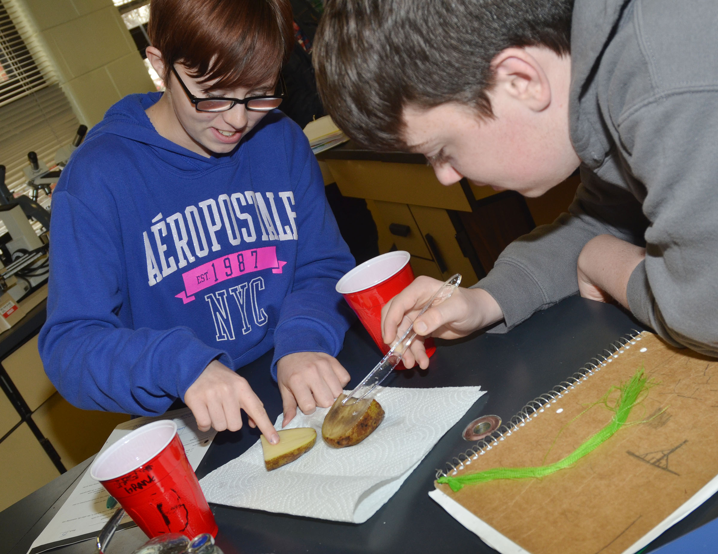 CHS sophomore Christina Phipps, at left, and freshman Grant Rinehart see how the osmosis process effected their potato.