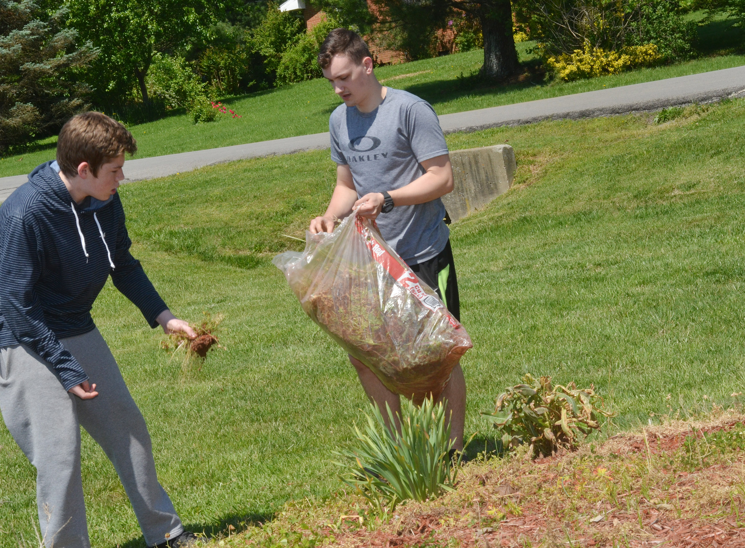 CHS seniors Aubrey Hunt, at left, and Jonathan Rakes pull weeds at Miller Park.