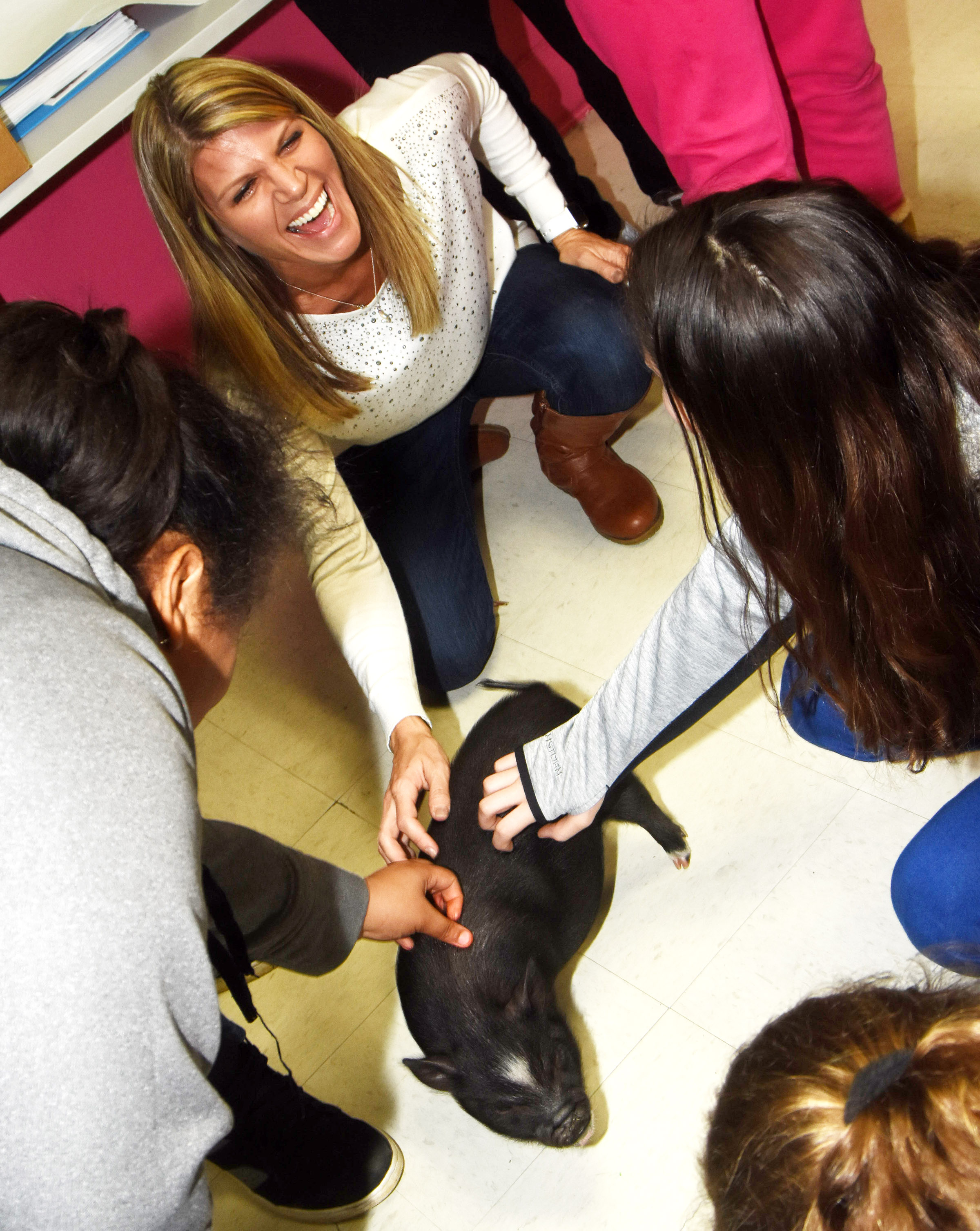 CMS teacher Andrea Gribbins laughs as she and her classmates pet a pig. The pig was brought to school after students studied a reading passage about pigs.