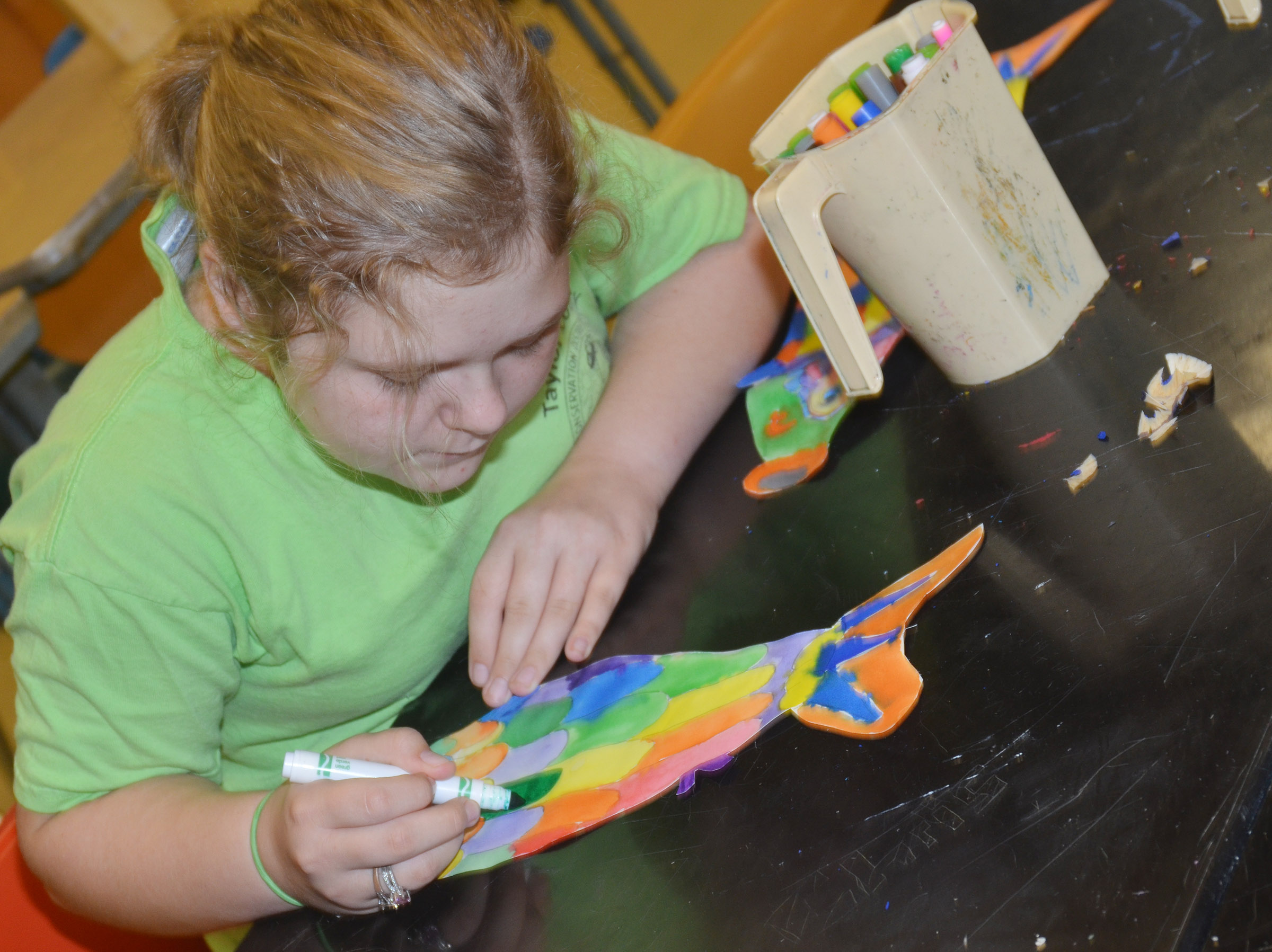 CMS sixth-grader Alexis Sharp colors her koinobori.