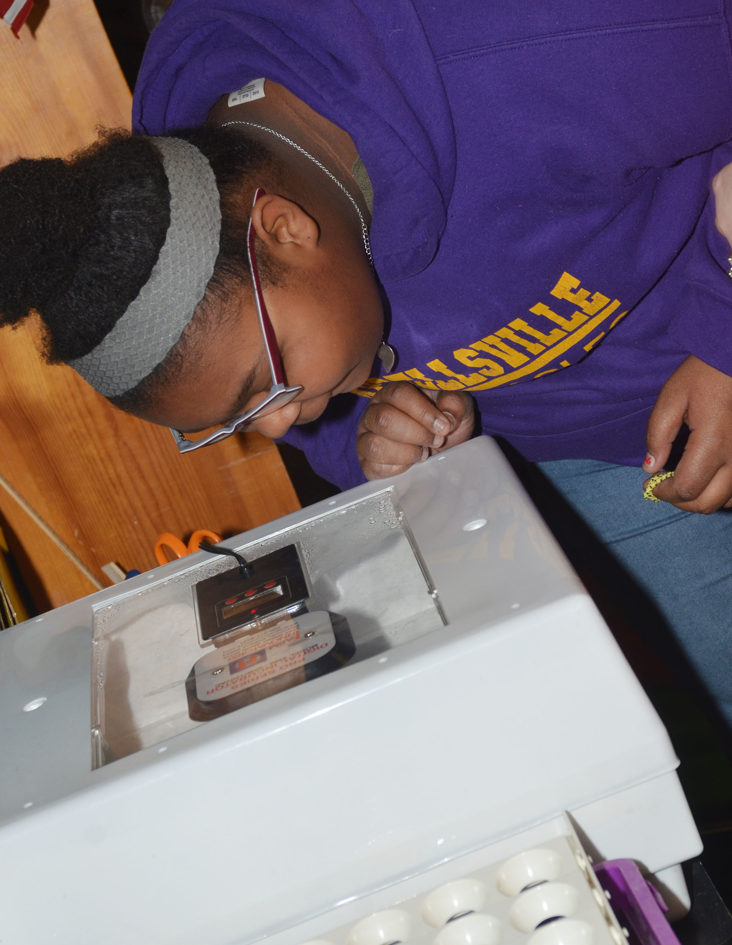 CMS eighth-grader Destany Lane looks at the eggs in the incubator.
